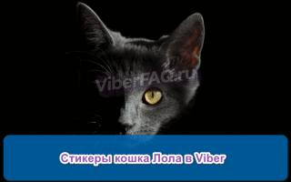 Как скачать стикеры с кошкой Лола в Viber