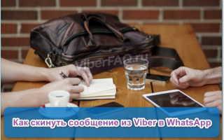 Как отправить сообщение с Viber в WhatsApp — инструкция