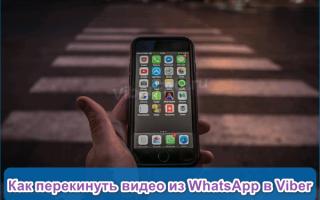 Как отправить видео с WhatsApp на Viber — все способы