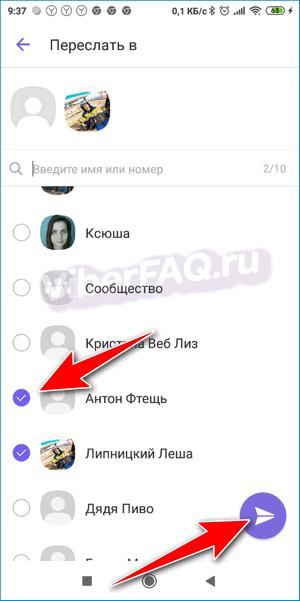 Выбор друга